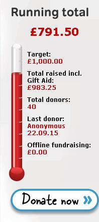 Fundraising target